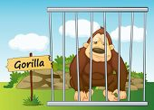 illustration of a gorilla in cage and wooden board