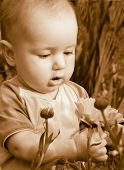 Tot Looks At Flower Tone Sepia