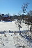 Winter Mill