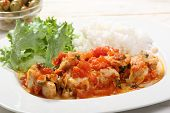 chicken white meat with tomato sauce on a plate