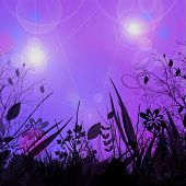 Fantasy Dreamland