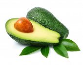 Fresh Green Avocado Fruits With Leaf Isolated On White