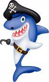 Cute pirate shark cartoon