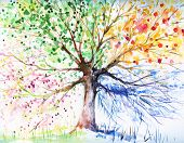 picture of fall decorations  - Hand painted illustration of four season tree - JPG