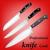 Professional knife cook