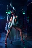 stock photo of strip tease  - Striptease in night club  - JPG