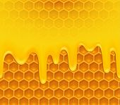 Background of melting honey on honeycomb pattern - raster version