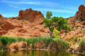 Laguna del desierto