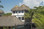 Thatched Roof Jungle Residence