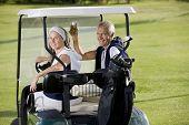Senior happy couple on the golf cart