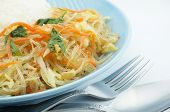 Vegetarian Fried Vermicelli With Rice