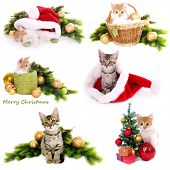 Collage of kittens with Christmas decorations isolated on white