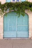 picture of tendril  - Old wooden garage door rounded top painted in turquoise surrounded by ivy tendrils - JPG