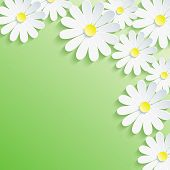 Stylish Trendy Background, White 3D Flower Chamomile