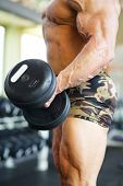 Hand of middleaged bodybuilder in shorts raising dumbbell in gym hall