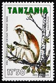 Postage Stamp Tanzania 1985 Red Colobus, Old World Monkey