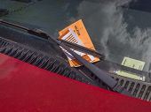 parking ticket violation