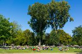 AMSTERDAM - AUGUST 27: People relax in Vondel park on August 27, 2014 in Amsterdam. Vondel Park largest and most famous park in Amsterdam