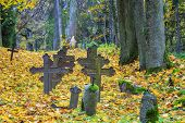 Old crosses on graves with autumn leaves around