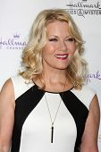 LOS ANGELES - NOV 4:  Barbara Niven at the Hallmark Channel's