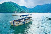 The Tourist Boat