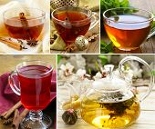 collage of assortment of tea in cups with herbs and spices