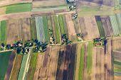 Polish Farmland Near Krakow