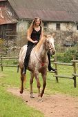 Amazing Girl Riding A Horse Without Bridle