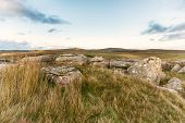 Cornwall Moors