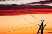 Electric Line Against Colorful Sky At Sunset