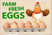 Farm fresh eggs poster with chicken