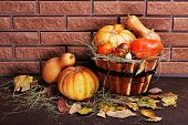 Pumpkins in wooden tub on floor on brick wall background