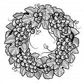 Retro grapes wreath black and white. Vector