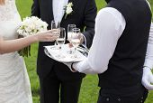 picture of waiter  - Waiter serving champagne  - JPG