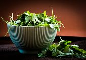 rucola in bowl on brown background
