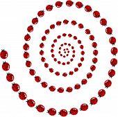 Ladybird spiral