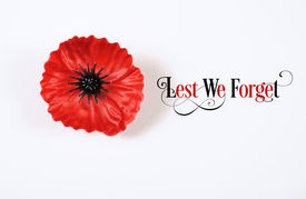 image of lapel  - Lest We Forget Red Flanders Poppy Lapel Pin Badge for November 11 Remembrance Day appeal - JPG