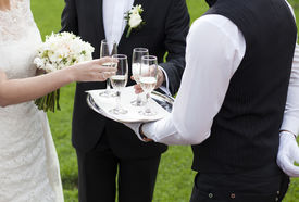 picture of champagne color  - Waiter serving champagne  - JPG