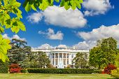 picture of washington monument  - The White House at summer - JPG