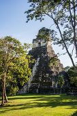 stock photo of mayan  - View of Mayan historic building at Tikal Jungle - JPG