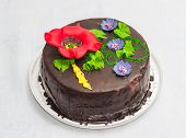 pic of tame  - Round cake covered with chocolate glazing on top tameing floral ornament - JPG