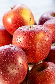 Постер, плакат: Dewdrops On The Red Apples