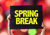 pic of spring break  - Spring Break card with bokeh background - JPG