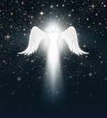 picture of cherubim  - Digital illustration of an angel in the night sky full of stars - JPG