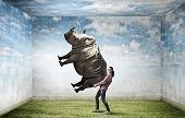 foto of rhino  - Funny young girl making effort to lift huge rhino - JPG