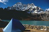 Himalaya Camp