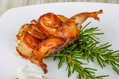 picture of quail  - Grilled quail with rosemary on the wood background - JPG
