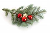 Decorated Christmas Bough