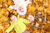Three baby friends lying on the  autumn leaves