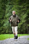 active handsome senior man nordic walking outdoors on a forest path, enjoying his retirement